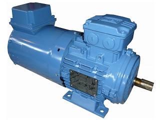 Ventilation forcée pour moteur WEG